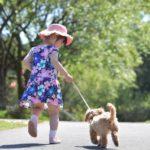 いつからOK? 準備は?子犬との散歩を安全に楽しむために知っておきたいこと