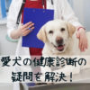 犬の健康診断のギモン。受けた方がいい?内容や頻度、費用は?保険は?【獣医師監修】