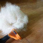 部屋中毛だらけはイヤ!犬の抜け毛対策&掃除テクニック!