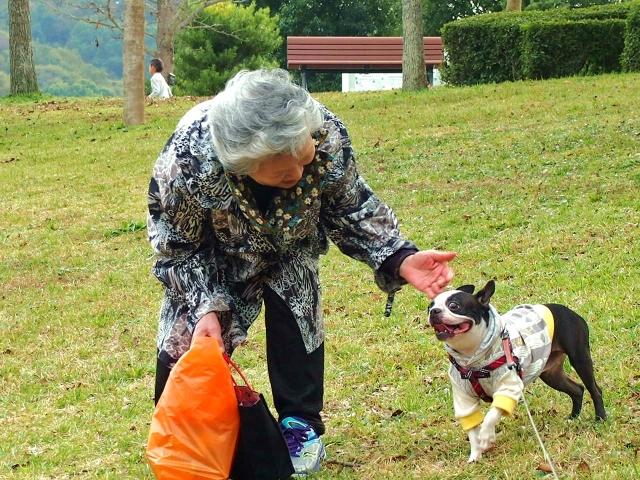 犬どうしの社会化は大切