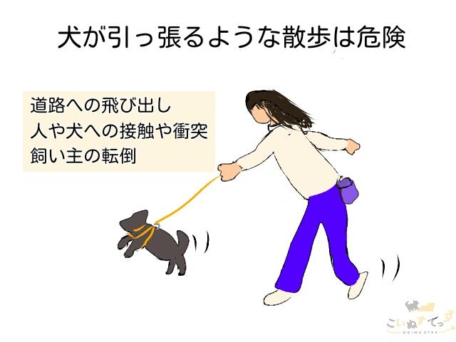 リードを犬が引っ張って進むような散歩はとても危険