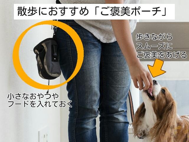 犬の散歩で引っ張らずに歩けているタイミングでご褒美を与えるためのポーチ