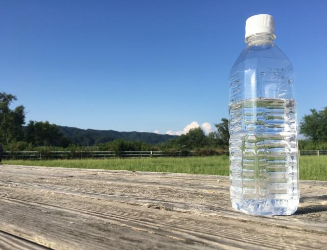 犬の熱中症の応急処置に必要な水