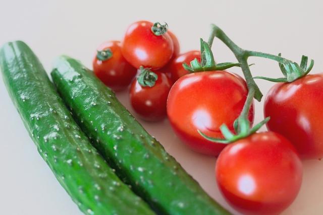 夏に犬と楽しめる野菜