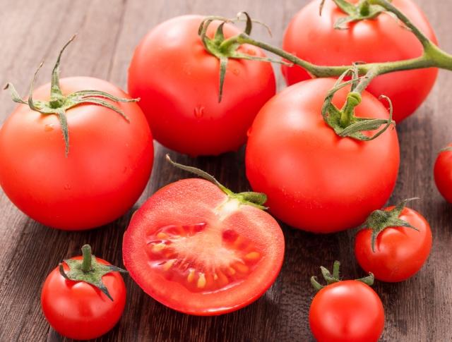 夏に犬が食べてもおいしいトマト