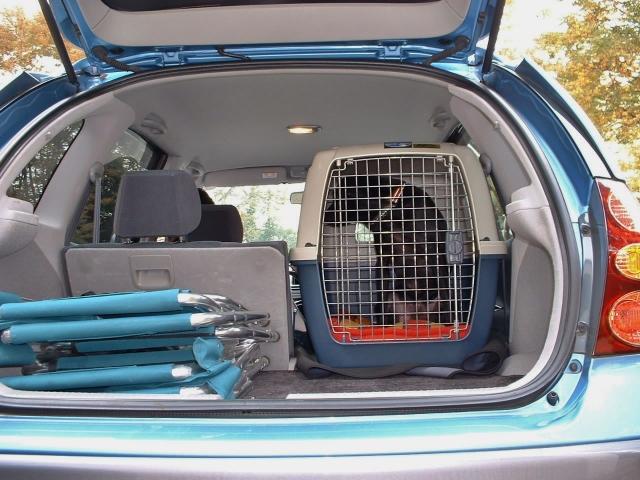 車でのお出かけに必須の愛犬のクレート