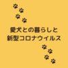 <8/24追記>国内の犬で新型コロナウイルスPCR検査陽性。愛犬も検査できる?【獣医師監修】