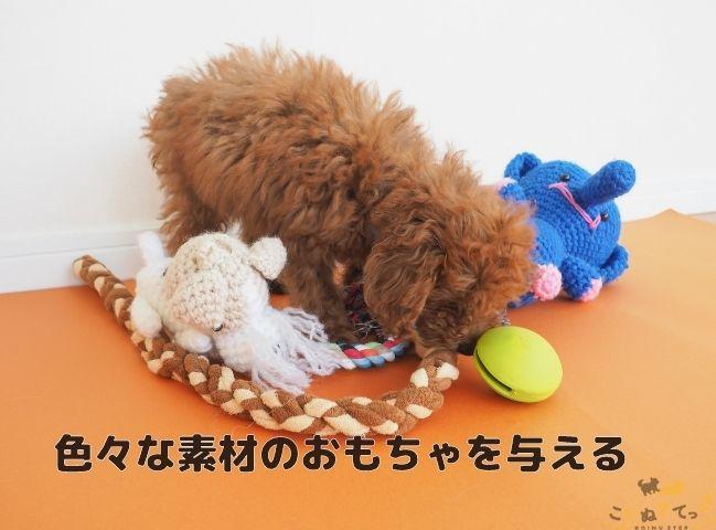 子犬の甘噛みのしつけをする前に色々なおもちゃで遊ばせる