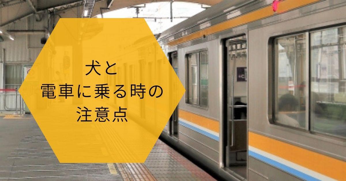 犬と電車に乗る時の注意