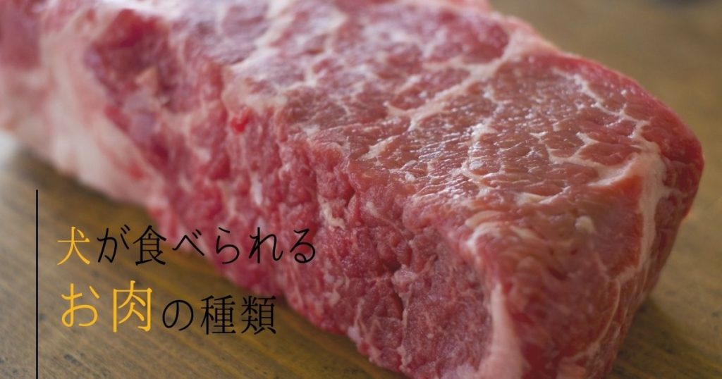 犬が食べられる肉