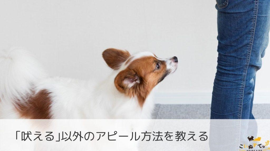 吠えのしつけをする犬