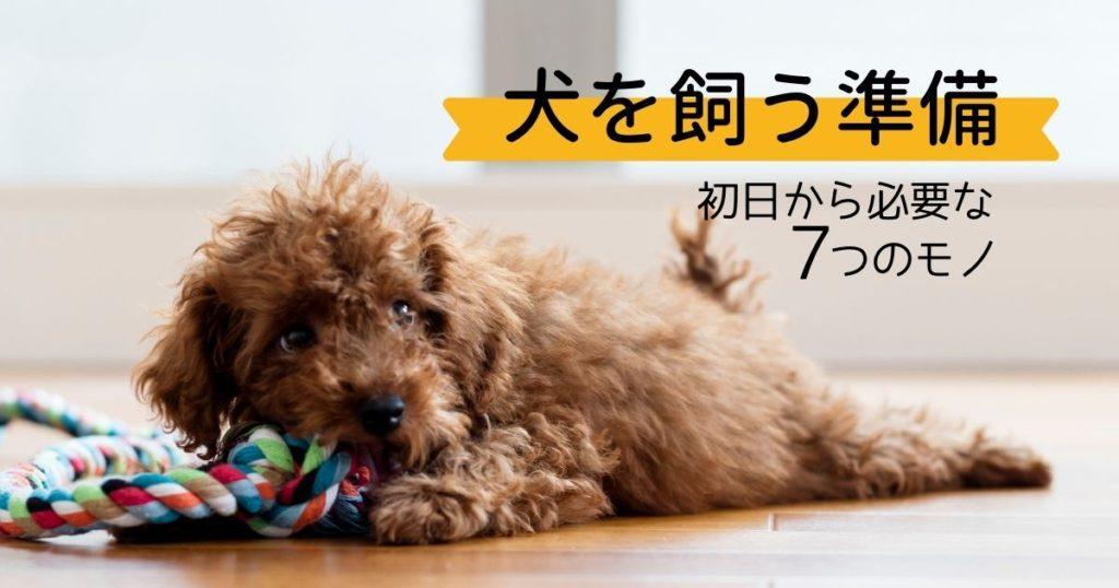 犬を飼う準備ができている状態で迎えられた子犬