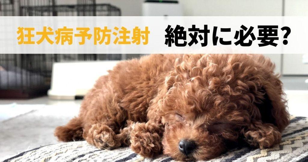 狂犬病予防注射が必要な犬