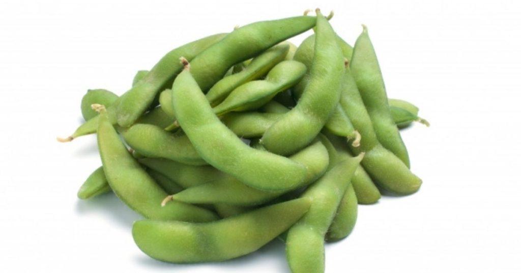 犬が食べられる夏野菜である枝豆