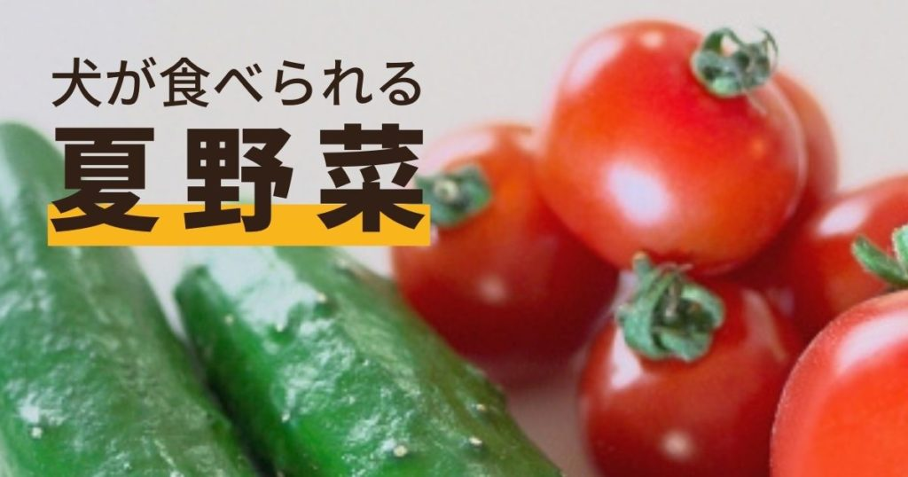 犬が食べられる夏野菜