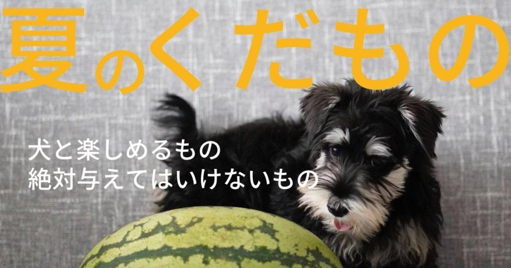 犬が食べられる夏の果物